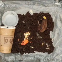 "The things that were in the bin ""compostable"""